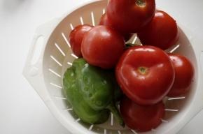 В детских лагерях Петербурга запретили свежие овощи и фрукты