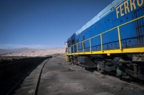 Грузовой поезд насмерть сбил пятилетних девочку и мальчика