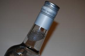 В Репино домушник уснул в чужой квартире, выпив бутылку водки из холодильника