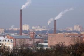 Петербург стал вторым в экологическом рейтинге крупных городов России
