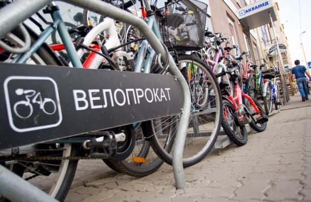 Велопрокат завоевывает популярность