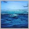 Фоторепортаж: «Пункт пропуска яхт Кронштадт»