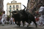 Сан-Фермин, Памплона, Испания, забег быков: Фоторепортаж