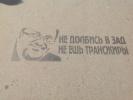 "Трафарет у метро ""Черная речка"": Фоторепортаж"