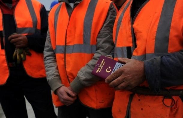 Бизнес выступил против обязательных полисов для мигрантов