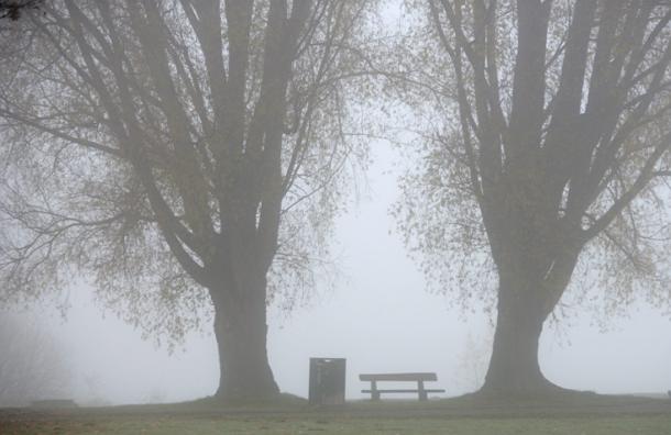 Власти опровергают информацию о смоге в Королеве