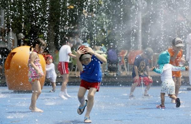 В Японии три человека скончались от теплового удара
