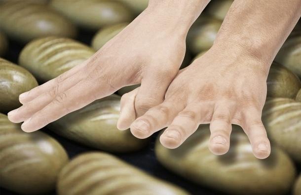 В Петербурге задержаны похитители хлеба и булочек