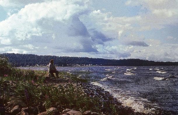 По Ладожскому озеру плавает труп неизвестного