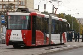 На Бухарестской улице в Купчино трамвай сбил женщину