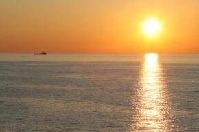 Из Финского залива выловили тело со связанными руками