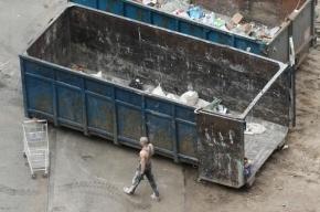 В Колпино в мусорном баке нашли новорожденную девочку