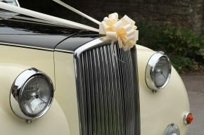 Московская полиция задержала свадебный кортеж, устроивший стрельбу в Люблино