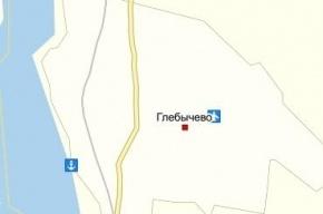 Пьяный водитель Skoda сбил двух подростков в Ленобласти