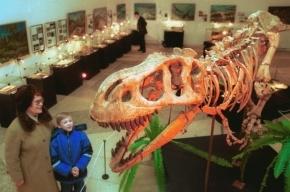 Глобальное потепление вернет динозавров, считают ученые
