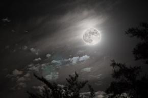 Ученые озвучили новую версию образования Луны
