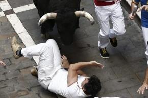 В Испании быки забодали людей во время традиционного забега