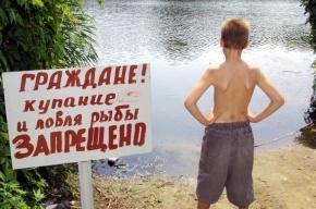 Купание в Суздальских озерах может быть опасно для жизни