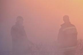 От фонтана кипятка на Стачек пострадало 20 машин