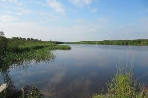 В Лахтинском разливе жизни купающихся угрожают рыболовные сети