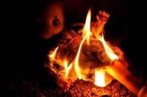 Три маленькие сестры сгорели в частном доме в Ленобласти