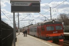 Электрички из Петербурга в Ораниенбаум идут с задержками в 20-40 минут
