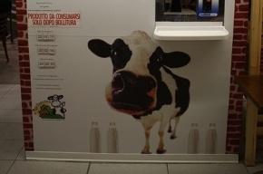 Петербуржцы отравились нестерилизованным молоком из молокоматов