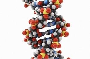 Биоинженеры смогли выключить хромосому, вызывающую синдром Дауна