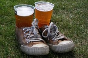 Полтора литра пива в неделю изнашивают мозг – исследование