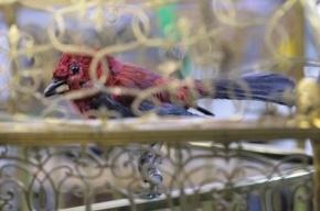 Эрмитаж выставит музыкальный автомат XVIII века с механической птицей