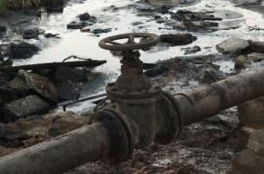 Из-за прорыва нефтепровода в Новосибирской области произошла утечка 3 тонн нефти