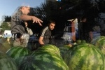Русская зачистка в Кировском районе Петербурга 21 августа: Фоторепортаж