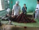 Во Вьетнаме обнаружены отец и сын, прожившие в изоляции от цивилизации 40 лет : Фоторепортаж