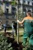 Сквер культурного петербуржца: Фоторепортаж