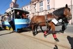 Конка на улицах Петербурга : Фоторепортаж