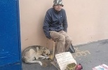 Фоторепортаж: «Попрошайки с животными на улицах Москвы»