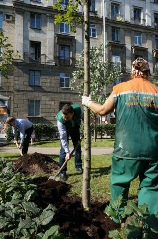 Сквер культурного петербуржца: Фото