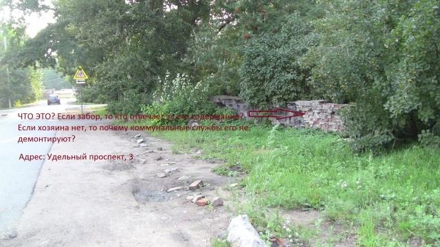 Тротуары Выборгского района: Фото