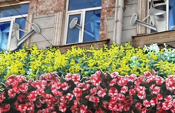 Жильцы сажают цветы под окнами, а дворники их уничтожают
