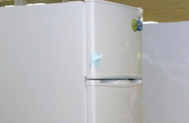 Тело мужчины обнаружено в холодильнике квартиры в Отрадном