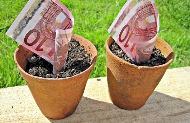 Курс евро вырос до 44 рублей впервые с 2009 года
