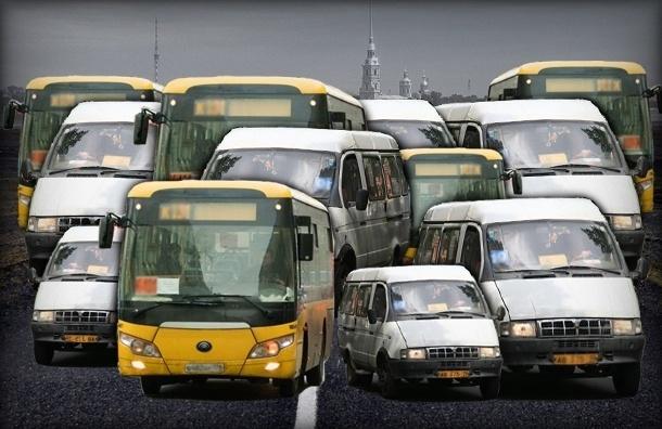 Нелегальные перевозчики нужны коррупционерам и многим жителям Петербурга