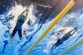 Россия стала третьей в медальном зачете чемпионата мира по водным видам спорта