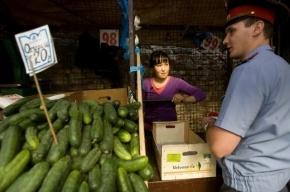 Во Фрунзенском районе Петербурга полицейские проверяют торговые точки