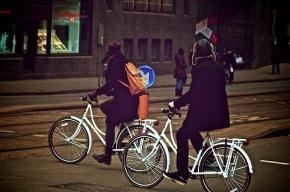 В петербуржском Купчино пойман велосипедный вор