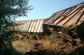 Три вагона с тротилом перевернулись в Самарской области