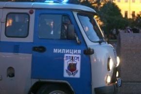 В Подмосковье судят сотрудников ППС, избивших мужчину за неумение переходить дорогу