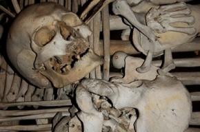 Петербуржец нашел под паркетом человеческие кости