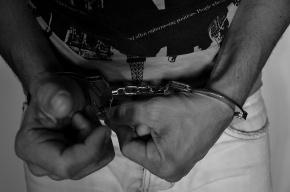 В Пушкине задержан бомж, насиловавший маленьких девочек