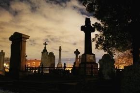 18-летнего мигранта будут судить за изнасилования на Большеохтинском кладбище